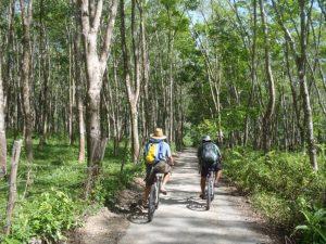 langkawi nature cycling