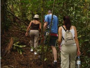 langkawi trekking