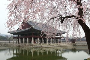 seoul tour package