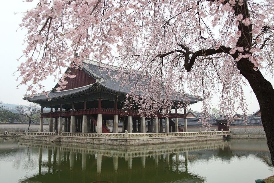 Seoul Tour Packages Thumbnail